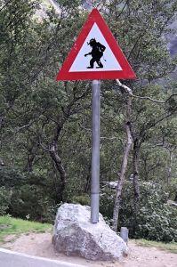 Beware - Trolls!